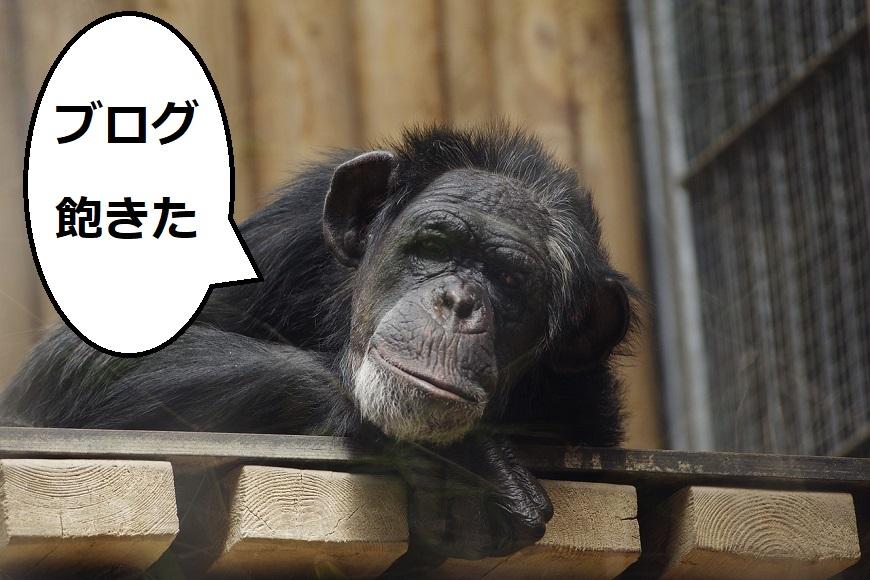 ブログに飽きた猿