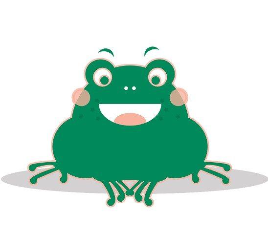 【初心者向け】これからカエルを飼育する人に向けて解説します!