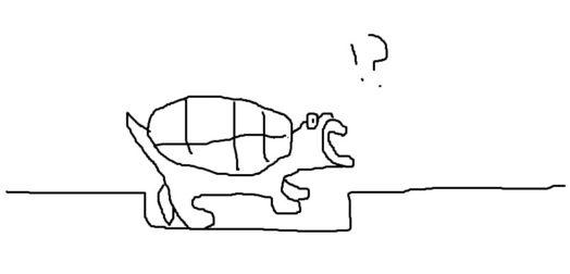 亀の落とし穴