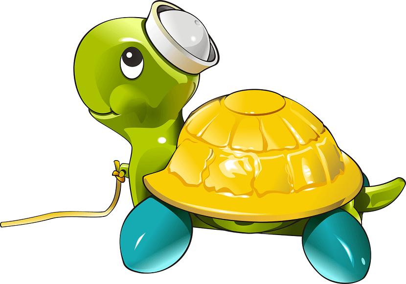 亀に散歩をさせるべき理由【注意点も合わせて解説するお!】