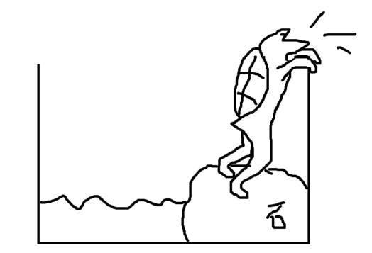 亀の水槽の高さ