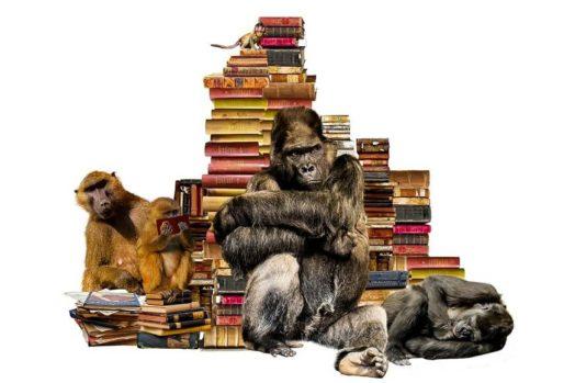 趣味に飽きた人が読むべき記事。3つの選択があります
