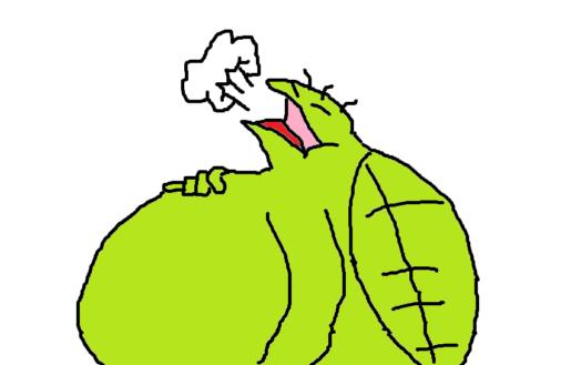 亀が太った時の対処法