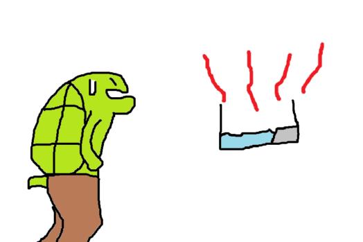 亀に適切な水温とは?【決まりはないけど目安はある】