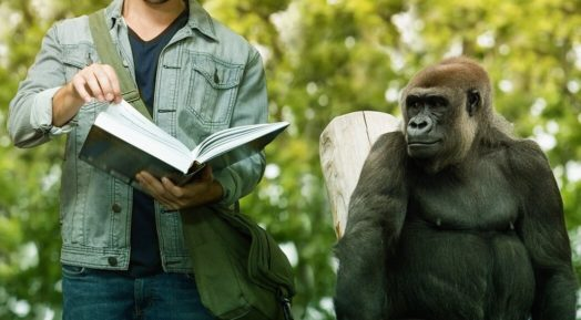 本を早く正確に読む方法【ポイントは3つだけです】
