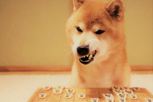 将棋の本で効率よく棋力UPする方法
